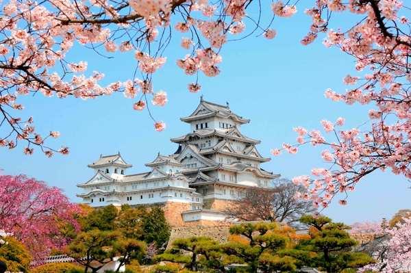 Япония. Особенности современного государства.