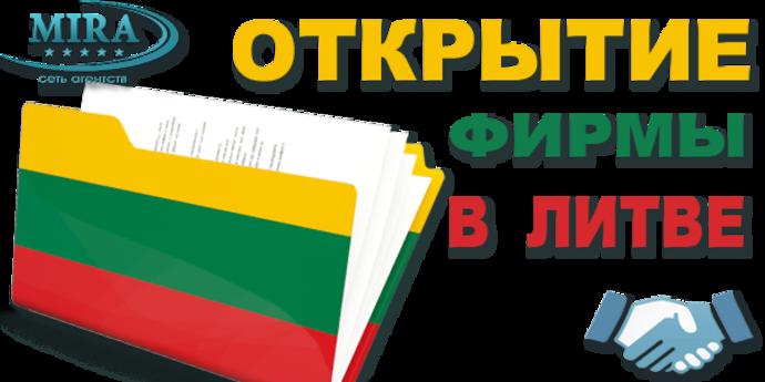 Открыть фирму в Литве самостоятельно